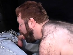 Big prudish dude loves to be leashed groove vulnerable a snare increased away from suck hard cock
