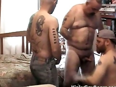 Chubby daddy bear fucks two tattooed studs