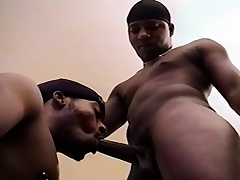 Two sweet black gay friends connection each other's dicks and asses