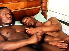 Two sexy gay jet studs enjoying each other's big cocks on burnish apply bed